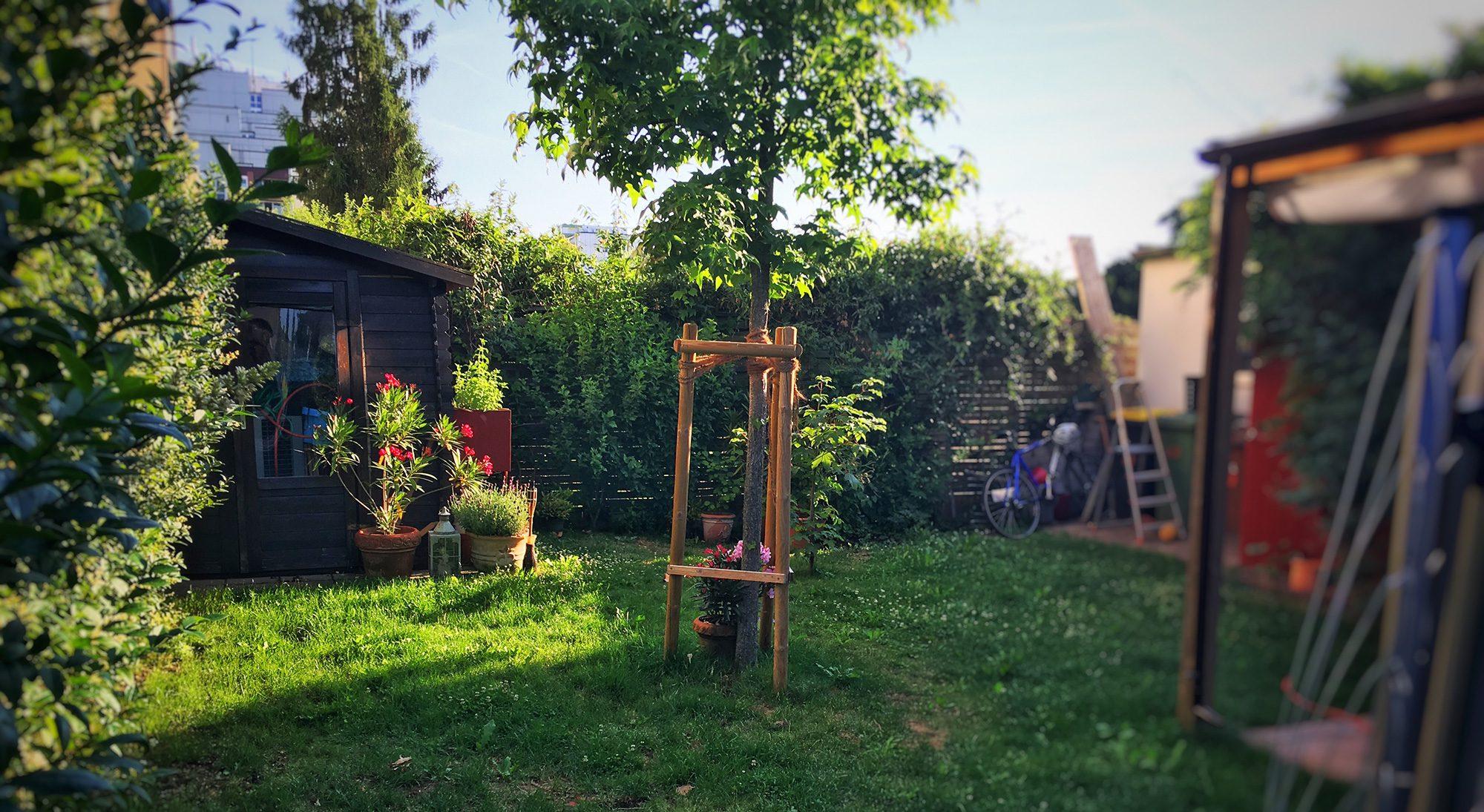 noch unser Garten